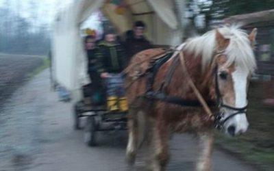 Kindergeburtstag in den Highfields. …Kutschenfahrt mit Einkehr…. und am Abend…eine Gruselgeschichte erzählt von Lhyrand vom Hammerberg… hui war das nebelig in der Schänke…